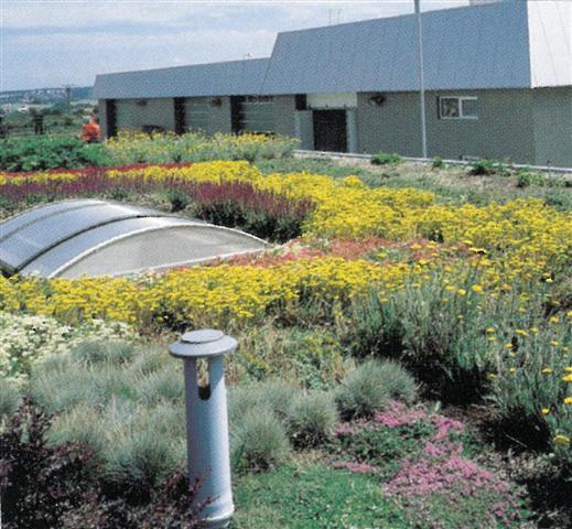 Scl srl prodotti prodotti e sistemi impermeabilizzanti - Giardini sui terrazzi ...